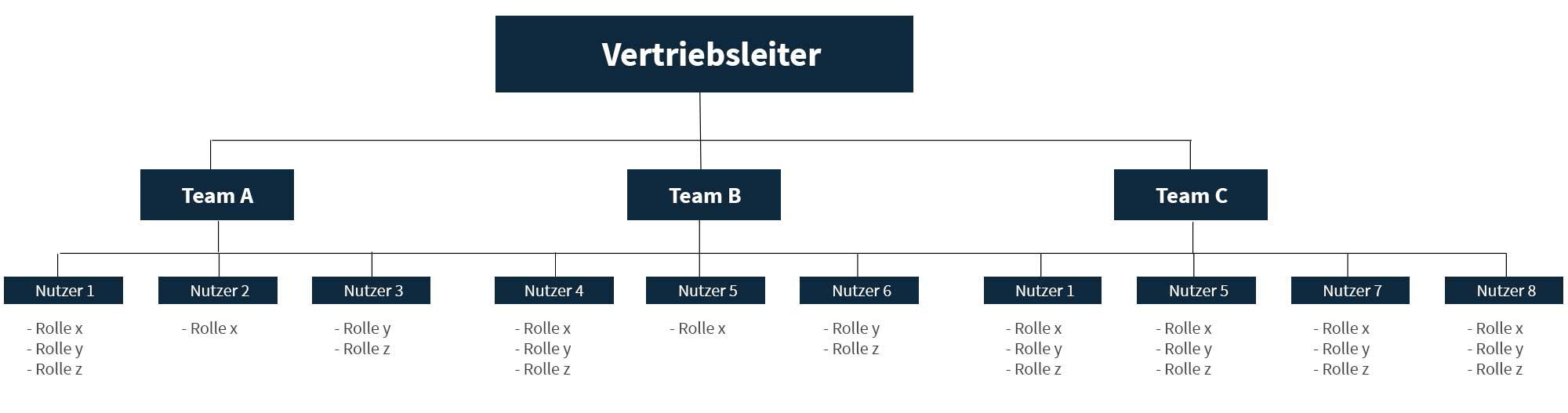 Organigramm mit Vertriebsleiter, dem drei Teams unterstellt sind, deren Mitglieder verschiedene Rollen erfüllen.