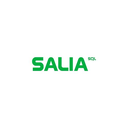 System Schnittstelle Salia